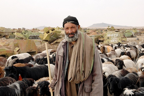 Afghanistan Shepherd - From Afghanistanmatters, (Flickr: Creative Commons licence)