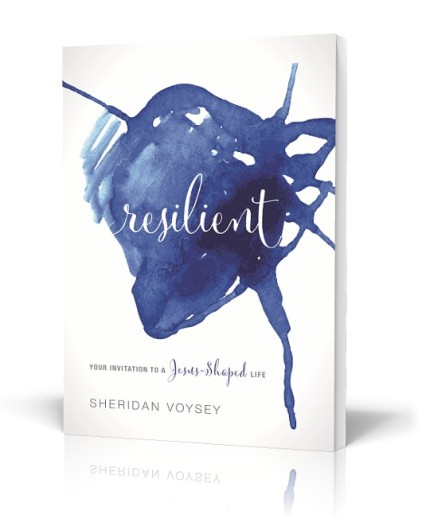 Resilient-3D-Cover-Main-530w-422x530