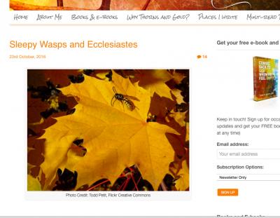 sleepy wasps screen-shot-2016-11-07-at-16-09-08